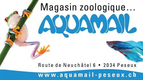 AQUAMAIL - Commerce zoologique